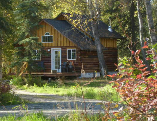 Private rental cabin in the Talkeetna woods